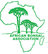 Webpage African Bonsai Association