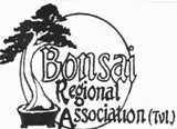 Bonsai Regional Association TVL