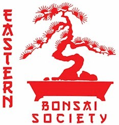Eastern Bonsai Society Highlands North