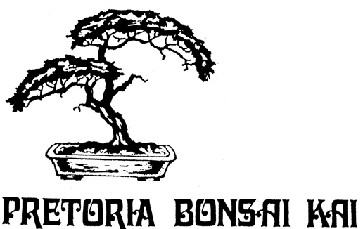 Web Page Pretoria Bonsai Kai - Northern Pretoria