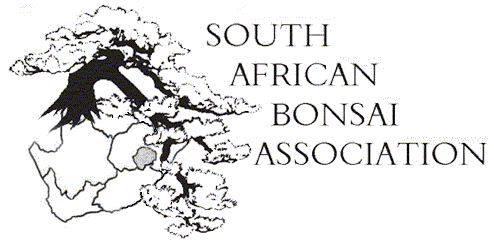 Webpage of South African Bonsai Association